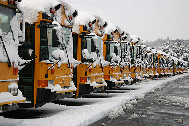 School Buses with Snow