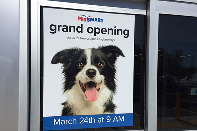 Join Wokq For The Grand Opening At Pet Smart In Newington